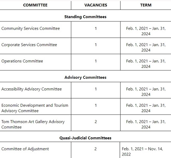 city committees